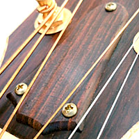 アコースティックギターののロッドカバー