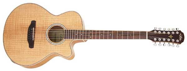 アコースティックギターの12弦ギター